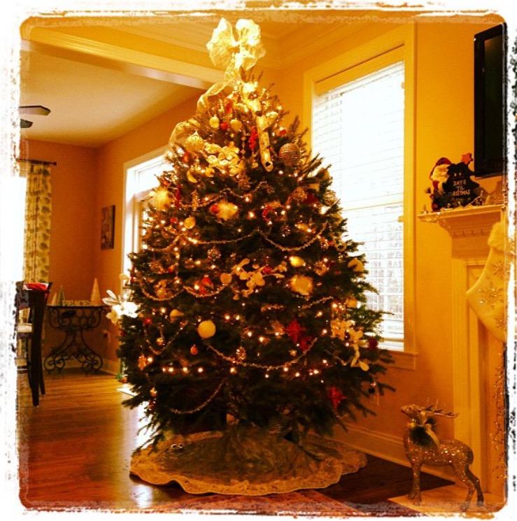 kathy - holiday treee