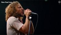 Daily Rush Pearl Jam